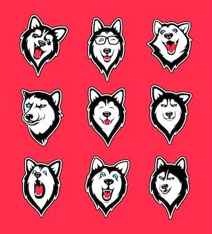 Coleção de adesivos de husky siberiano