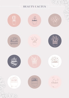 Coleção de adesivos em redes sociais de planta de casa fofa