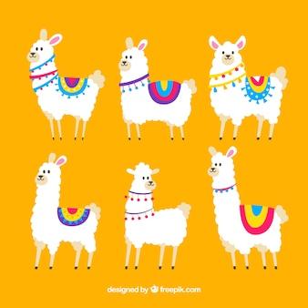 Coleção de alpacas bonito