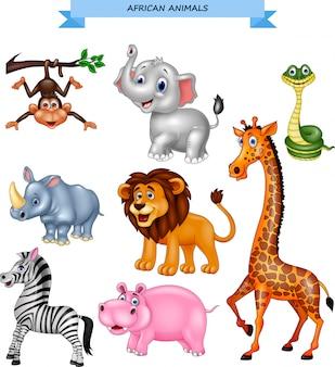Coleção de animais africanos dos desenhos animados