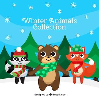 Coleção de animais bonitos da floresta de inverno