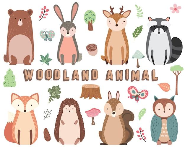 Coleção de animais da floresta isolada no branco