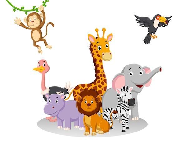 Coleção de animais da selva