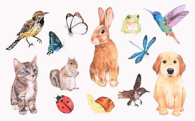 Coleção de animais desenhados a mão