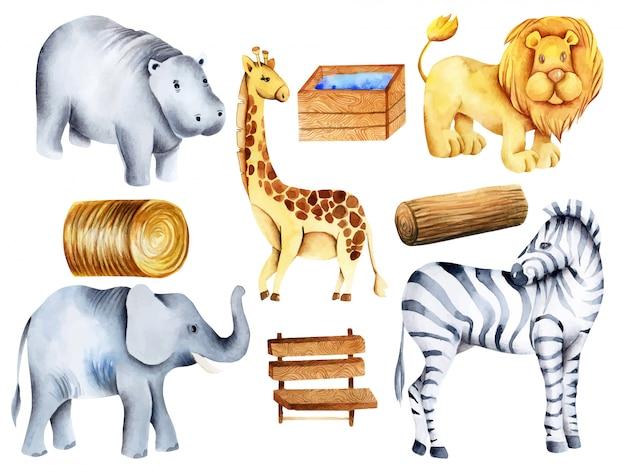 Coleção de animais em aquarela, elementos e atributos do zoológico, pintados à mão
