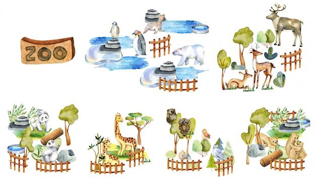Coleção de animais em aquarela, elementos e atributos do zoológico