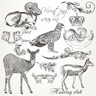 Coleção de animais ilustrados e ornamentos