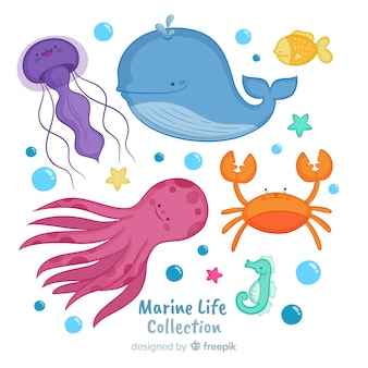 Coleção de animais marinhos de mão desenhada