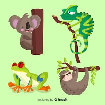 Coleção de animais tropicais planas