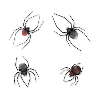 Coleção de aranhas realistas