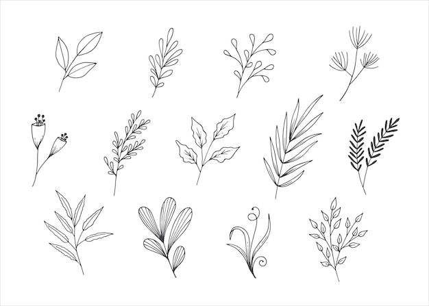 Coleção de arte linha folhas naturais
