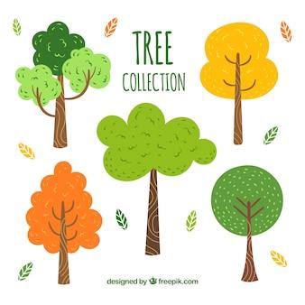 Coleção de árvores em estilo desenhado a mão