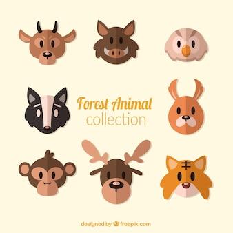 Coleção de avatares animais florestais plana