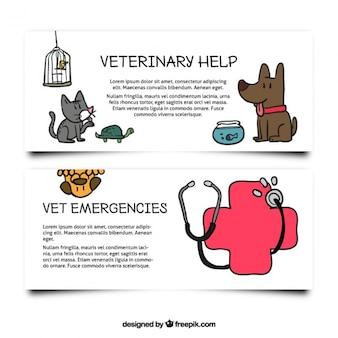 Coleção de bandeiras desenhadas à mão para o veterinário