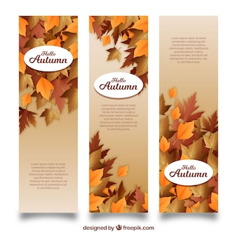Coleção de banner de outono com design realista