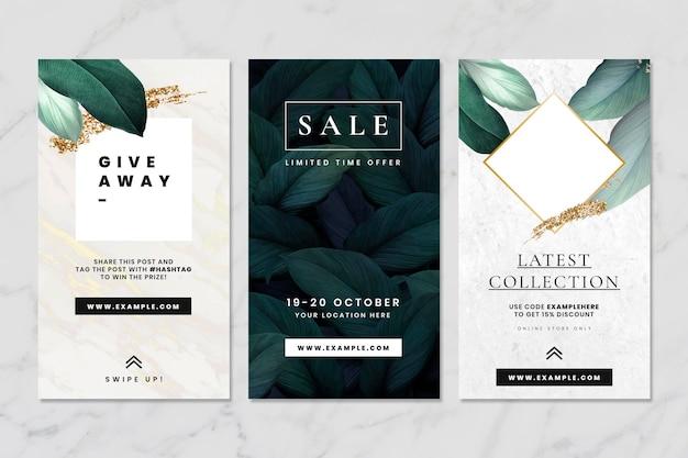 Coleção de banners de histórias de mídia social da leaf Vetor Premium