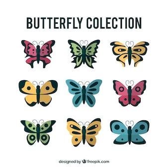 Coleção de belas borboletas