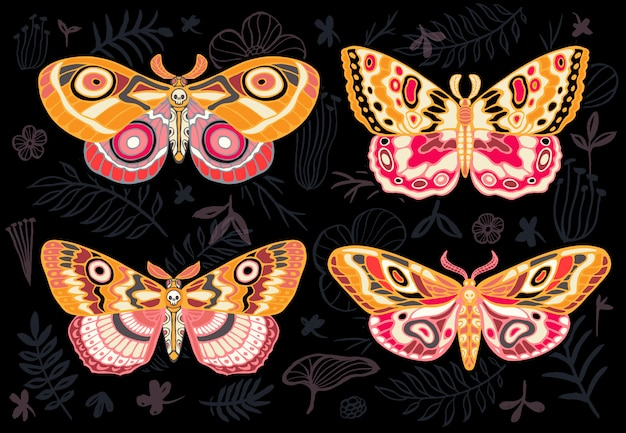 Coleção de borboletas coloridas, mariposa tropical de noite hawkmoth em fundo floral, conjunto de insetos, estilo vintage, asas, flores, folhas. desenhado à mão .