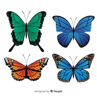 Coleção de borboletas planas