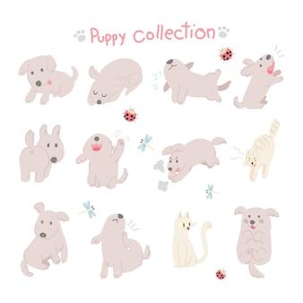 Coleção de cachorrinho de vetor