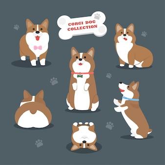 Coleção de cachorro corgi vector