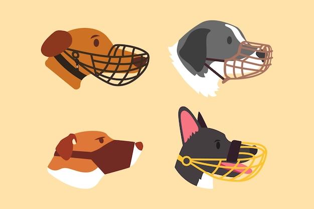 Coleção de cachorros de focinho achatado
