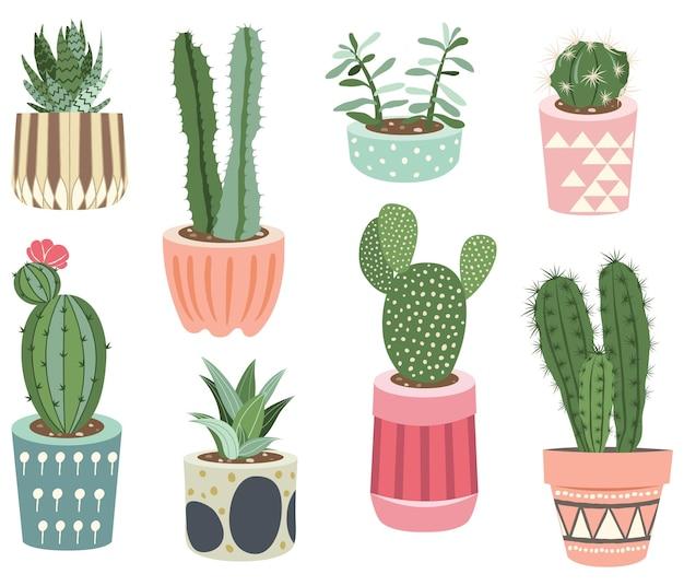 Coleção de cactos de plantas de interior para decoração de interiores