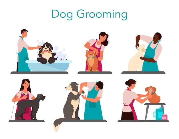 Coleção de cão de preparação de barbeiro profissional. mulher e homem cuidando de peles de animais de estimação - cortando e escovando peles, lavando.