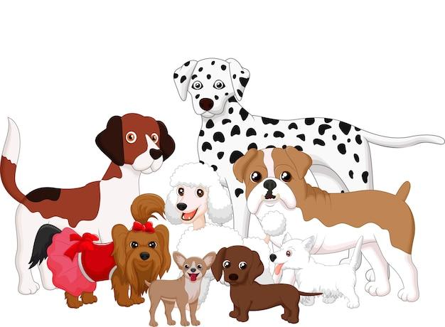 Coleção de cão dos desenhos animados
