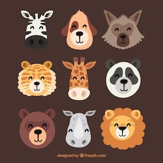 Coleção de caras de animais sorrisos