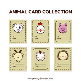 Coleção de cartão com rostos de animais