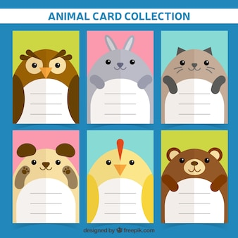 Coleção de cartão de animais com design plano
