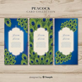 Coleção de cartão de pavão elegante