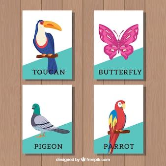 Coleção de cartões com pássaros e borboleta