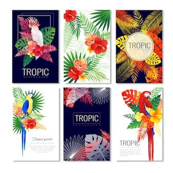 Coleção de cartões de design tropical