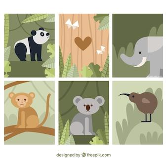 Coleção de cartões planos com animais na natureza