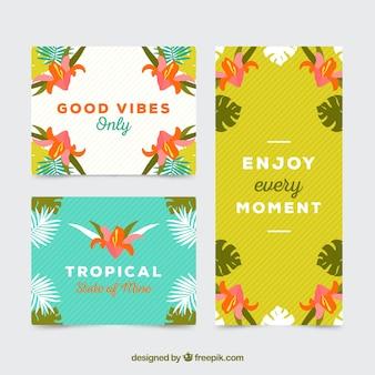 Coleção de cartões tropicais de boas vibrações