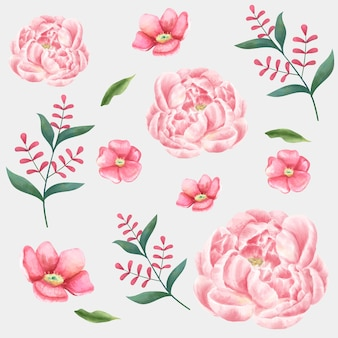 Coleção de clipart de desenho vetorial de flores em aquarela