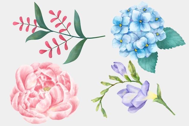 Coleção de clipart de vetores de flores desabrochando em aquarela