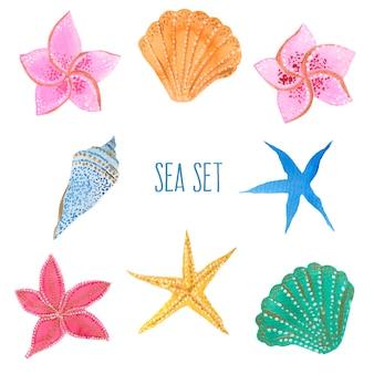 Coleção de conchas e estrelas do mar. ilustração em aquarela. elementos isolados do vetor.