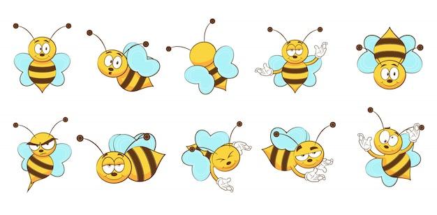 Coleção de conjunto de abelha