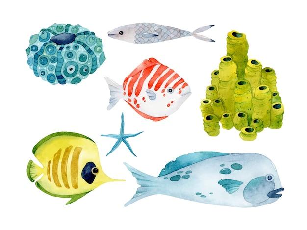 Coleção de conjunto de elementos isolados em aquarela de peixes coloridos