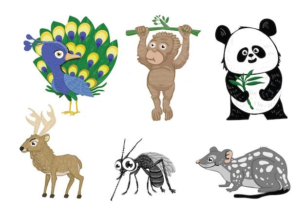 Coleção de conjuntos de animais
