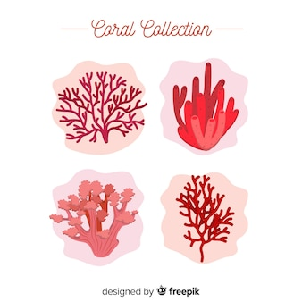 Coleção de coral liso