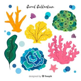 Coleção de coral