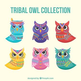 Coleção de coruja tribal de seis