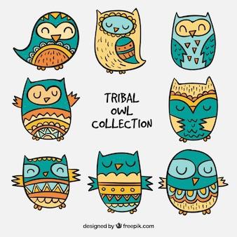 Coleção de coruja tribal