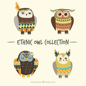 Coleção de corujas étnicas