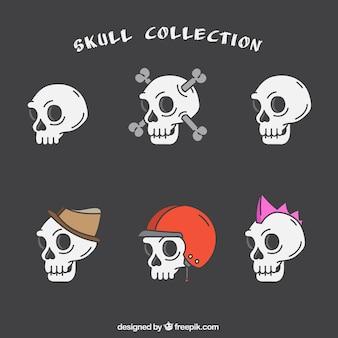 Coleção de crânios com acessórios decorativos