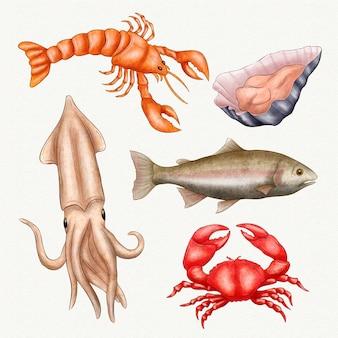 Coleção de criaturas do oceano em aquarela